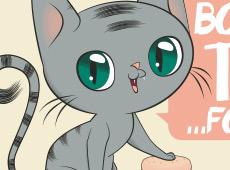 Kitty Burger